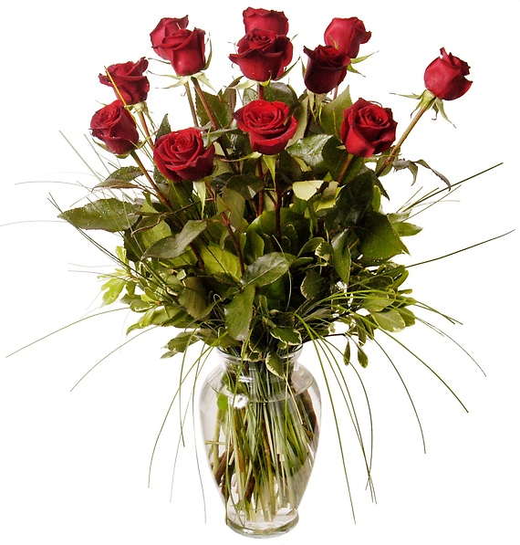Classic Long-Stemmed Roses, Large Blooms 70-CM