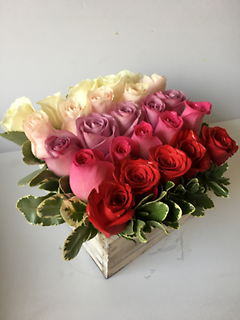 Pave Roses in a Box