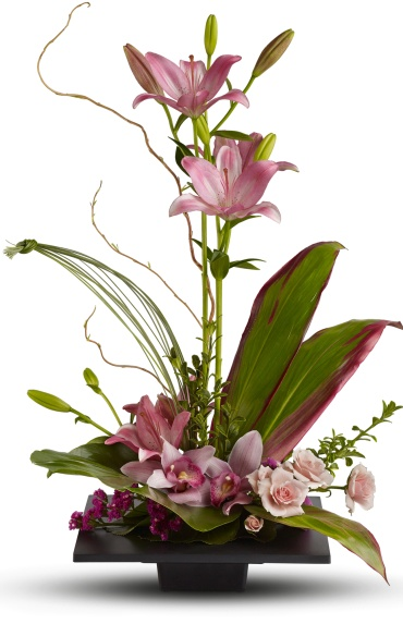 Imagination Blooms with Cymbidium Orchids Designer\'s Choice