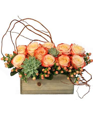 LOVER\'S SUNRISE MODERN ARRANGEMENT